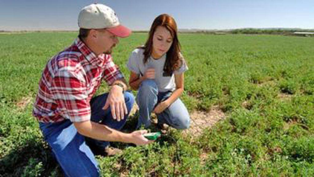 coltivatore o imprenditore agricolo