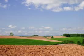 prelazione agraria